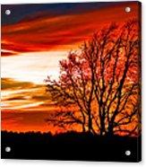 Texas Sunset Acrylic Print by Darryl Dalton