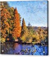 The Bald Cypress Acrylic Print by Daniel Eskridge