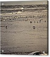 The Beach Is Ours Acrylic Print by Odd Jeppesen
