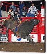 The Bull Rider Acrylic Print by Larry Van Valkenburgh