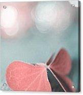 The Butterfly P02b Acrylic Print by Aimelle