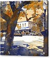 The College Street Oak Acrylic Print by Iain Stewart