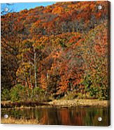 The Color Of Fall Acrylic Print by Billy Beasley