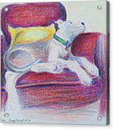 The Comfy Chair Acrylic Print by Ginny Schmidt