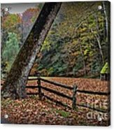 The Country Road Acrylic Print by Paul Ward