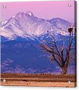 The Eagles And The Peaks Acrylic Print by Bryce Bradford