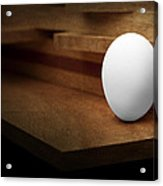 The Egg Acrylic Print by Tom Mc Nemar