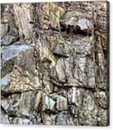 The Face In The Rock Acrylic Print by JC Findley