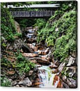 The Flume Acrylic Print by Heather Applegate