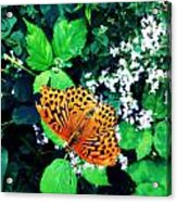 The Forest Guardian 2 Acrylic Print by Lucy D