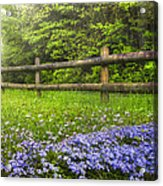 The Forest Is Calling Acrylic Print by Debra and Dave Vanderlaan