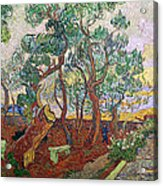 The Garden Of St Pauls Hospital At St. Remy Acrylic Print by Vincent Van Gogh