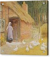 The Goose Girl Acrylic Print by Arthur Claude Strachan