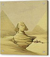 The Great Sphinx And The Pyramids Of Giza Acrylic Print by David Roberts