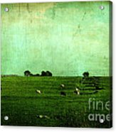 The Green Yonder Acrylic Print by Trish Mistric