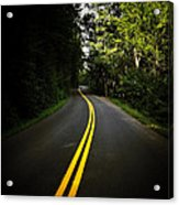 The Long And Winding Road Acrylic Print by Natasha Marco
