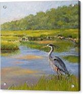 The Millway Marsh Acrylic Print by Karol Wyckoff