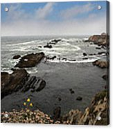 The Ocean's Call Acrylic Print by Laurie Search