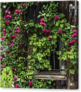 The Old Barn Window Acrylic Print by Debra and Dave Vanderlaan