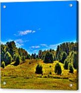 The Old Maple Ridge Ski Area - Old Forge Ny Acrylic Print by David Patterson
