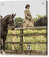 The Other Side Of The Saddle Acrylic Print by Linsey Williams