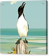 The Penguin Has Landed Acrylic Print by Anne Beverley-Stamps