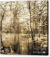 The Pond Acrylic Print by Yanni Theodorou