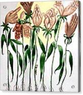 The Prayer Garden Acrylic Print by Anthony Falbo