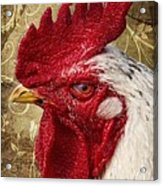 The Rooster Acrylic Print by Angela Doelling AD DESIGN Photo and PhotoArt