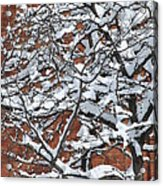 The Snow And The Wall Acrylic Print by Frederico Borges