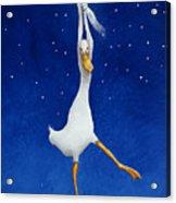 The Starcatcher... Acrylic Print by Will Bullas