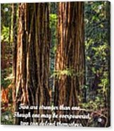The Strength Of Two - From Ecclesiastes 4.9 And 4.12 - Muir Woods National Monument Acrylic Print by Michael Mazaika