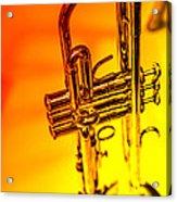 The Trumpet Acrylic Print by Karol Livote