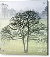 The Vale Of York From Crayke Acrylic Print by John Potter