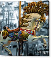 The Wild Stallion Acrylic Print by Colleen Kammerer