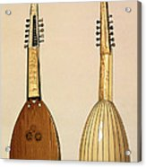 Theorbo, Made By Giovanni Krebar Acrylic Print by Alfred James Hipkins