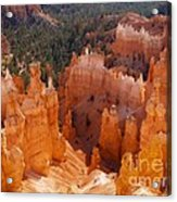 Thor's Hammer At Bryce Canyon In Utah Acrylic Print by Alex Cassels