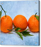 Three Tangerines Acrylic Print by Alexander Senin