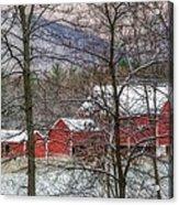 Through The Trees Acrylic Print by Stephanie Calhoun