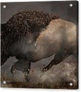 Thunderbeast Acrylic Print by Daniel Eskridge