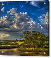 Tide Water Acrylic Print by Marvin Spates