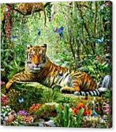 Tiger In The Jungle Acrylic Print by Adrian Chesterman