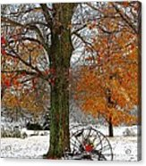 To Everything There Is A Season... Acrylic Print by Diane E Berry