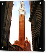Torre Del Mangia Siena Acrylic Print by Mike Nellums