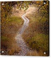 Trail Of Dreams Acrylic Print by Michael Van Beber