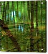 Translucent Forest Reflections Acrylic Print by Adam Jewell