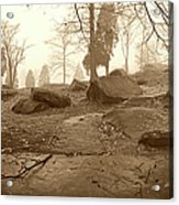 Tree And Steps At Devils Den - Gettysburg Acrylic Print by Jan W Faul
