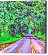 Tree Tunnel Kauai Acrylic Print by Dominic Piperata