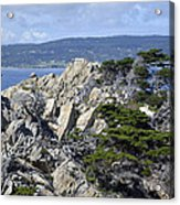 Trees Amidst The Cliffs In California's Point Lobos State Natural Reserve Acrylic Print by Bruce Gourley