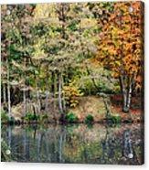 Trees In Autumn Acrylic Print by Natalie Kinnear
